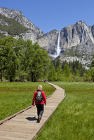 Tourist, hiker walking towards Upper Yosemite Falls, on boardwalk, across Sentinel Meadow, Yosemite Valley, Yosemite National Pa 20025365376| 写真素材・ストックフォト・画像・イラスト素材|アマナイメージズ