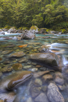 Crystal clear rocky river in Fiordland National Park, UNESCO World Heritage Site, South Island, New Zealand, Pacific 20025369223| 写真素材・ストックフォト・画像・イラスト素材|アマナイメージズ
