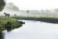 Scenic with mist, horse and two people cycling next to River Mark in autumn, Breda, North Brabant, The Netherlands (Holland), Eu 20025376157| 写真素材・ストックフォト・画像・イラスト素材|アマナイメージズ