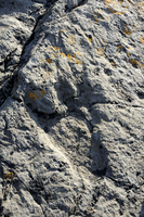 150 million year old fossilised footprint (ichnite) of theropod dinosaur in karst limestone rock, Terenes, Asturias, Spain, Euro 20025376185| 写真素材・ストックフォト・画像・イラスト素材|アマナイメージズ