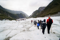 Tourists on Fox Glacier, Westland National Park, UNESCO World Heritage Site, South Island, New Zealand, Pacific 20025377550| 写真素材・ストックフォト・画像・イラスト素材|アマナイメージズ