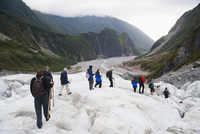 Tourists walking on Fox Glacier, Westland National Park, UNESCO World Heritage Site, South Island, New Zealand, Pacific 20025377552| 写真素材・ストックフォト・画像・イラスト素材|アマナイメージズ