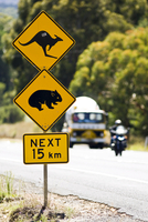 Animals Crossing sign on Great Western Highway from Sydney, New South Wales, Australia 20025378804| 写真素材・ストックフォト・画像・イラスト素材|アマナイメージズ