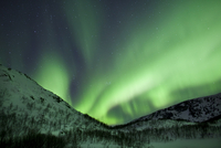 The Aurora Borealis, the spectacular Northern Lights fill the sky with dazzling green light above Kvaloya island at Tromso in th 20025380609| 写真素材・ストックフォト・画像・イラスト素材|アマナイメージズ