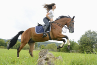 Teenage girl jumping with a Mecklenburger horse on a paddock
