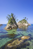 Kamogaiso(Duck's rocky shore), Uradome Coast,  Sea of Japan, Iwami-cho, Tottori Prefecture, Japan 20025389275| 写真素材・ストックフォト・画像・イラスト素材|アマナイメージズ