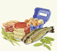 Food with protein, meat, fish, eggs and green beans 20039007483| 写真素材・ストックフォト・画像・イラスト素材|アマナイメージズ