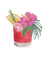 Cocktail with fresh fruit, herbs and flower 20039011166| 写真素材・ストックフォト・画像・イラスト素材|アマナイメージズ