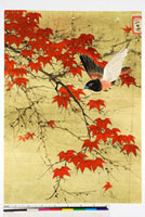 友禅図案 20046000996| 写真素材・ストックフォト・画像・イラスト素材|アマナイメージズ