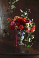 Autumnal bouquet decorated with fruit 20052007882| 写真素材・ストックフォト・画像・イラスト素材|アマナイメージズ