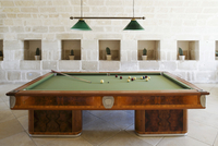 Billiard table in a hall in front of stone wall with cactus  20052011286| 写真素材・ストックフォト・画像・イラスト素材|アマナイメージズ