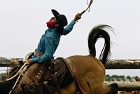 Cowboy wearing chaps & red scarf on bucking horse inside a c 20055005953| 写真素材・ストックフォト・画像・イラスト素材|アマナイメージズ
