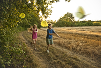 8 year old boy and girl chasing butterflies with nets 20055020214| 写真素材・ストックフォト・画像・イラスト素材|アマナイメージズ