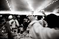 Guests at a party raise their glasses to give a toast. 20055025338| 写真素材・ストックフォト・画像・イラスト素材|アマナイメージズ