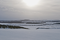 Snow covered landscape view of hills and fields, Berwickshire, Scotland 20056009018| 写真素材・ストックフォト・画像・イラスト素材|アマナイメージズ