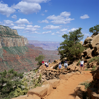 Hikers return from Canyon base, Grand Canyon, UNESCO World Heritage Site, Arizona, United States of America, North America 20062003249| 写真素材・ストックフォト・画像・イラスト素材|アマナイメージズ
