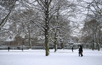 Snow covered trees next to Kensington Palace in Kensington Gardens, London, England, United Kingdom, Europe 20062008135| 写真素材・ストックフォト・画像・イラスト素材|アマナイメージズ
