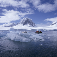 Tourists in rigid inflatable boat approach a seal lying on the ice, west coast of the Antarctic Pensinula, Antarctica, Polar Reg 20062009399| 写真素材・ストックフォト・画像・イラスト素材|アマナイメージズ