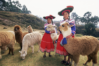 Portrait of two Peruvian girls in traditional dress, with their animals, near Cuzco, Peru, South America 20062011755| 写真素材・ストックフォト・画像・イラスト素材|アマナイメージズ
