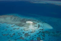 Aerial photography of coral reef formations of the Great Barrier Reef, UNESCO World Heritage Site, near Cairns, North Queensland 20062022358| 写真素材・ストックフォト・画像・イラスト素材|アマナイメージズ