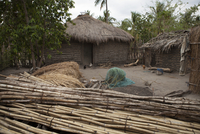 A traditional mud hut home with a thatched roof and a solar panel on the top of it, Tanzania, East Africa, Africa 20062024840| 写真素材・ストックフォト・画像・イラスト素材|アマナイメージズ