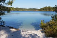 McKenzie Lake, Fraser Island, UNESCO World Heritage Site, Queensland, Australia, Pacific 20062041410| 写真素材・ストックフォト・画像・イラスト素材|アマナイメージズ