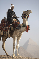 A Bedouin guide on camel-back overlooking the Pyramids of Giza, UNESCO World Heritage Site, Cairo, Egypt, North Africa, Africa 20062067770| 写真素材・ストックフォト・画像・イラスト素材|アマナイメージズ