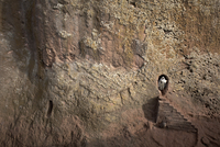A woman emerges from a tunnel leading to the rock-hewn church of Bet Amanuel, in Lalibela, Ethiopia, Africa 20062068020| 写真素材・ストックフォト・画像・イラスト素材|アマナイメージズ