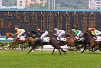 Horses race past large scoreboard during race at Happy Valley racecourse, Hong Kong, China, Asia 20062073333| 写真素材・ストックフォト・画像・イラスト素材|アマナイメージズ