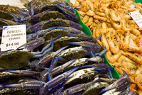 Green Blue Swimmer crabs and cooked Tiger prawns for sale at Sydney Fish Market, Darling Harbour, Australia 20062113441| 写真素材・ストックフォト・画像・イラスト素材|アマナイメージズ