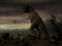An old-fashioned depiction of Tyrannosaurus Rex in upright stance. 20064000095| 写真素材・ストックフォト・画像・イラスト素材|アマナイメージズ