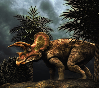 Triceratops was a herbivorous dinosaur from the Cretaceous period. 20064000103| 写真素材・ストックフォト・画像・イラスト素材|アマナイメージズ