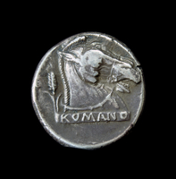 Silver coin showing the head of a horse. Campania, Italy, Ea 20065000425| 写真素材・ストックフォト・画像・イラスト素材|アマナイメージズ