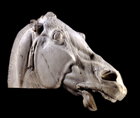 Head of a horse of Selene from the east pediment of the Part 20065001291| 写真素材・ストックフォト・画像・イラスト素材|アマナイメージズ