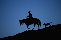Horse and dog silhouetted at dusk. Bighorn Basin, Wyoming, U 20070001683| 写真素材・ストックフォト・画像・イラスト素材|アマナイメージズ