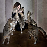 Young woman surrounded by affectionate cats. Brussels, Belgium 20071011758| 写真素材・ストックフォト・画像・イラスト素材|アマナイメージズ