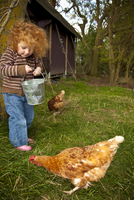 Bedfordshire, England. A little girl feeds the chickens while glamping. MR 20088007205| 写真素材・ストックフォト・画像・イラスト素材|アマナイメージズ