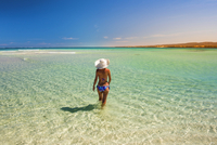 Turquoise Bay, Ningaloo Coast, Exmouth, Western Australia, Australia. Woman with straw hat in the pristine waters (MR). 20088011905| 写真素材・ストックフォト・画像・イラスト素材|アマナイメージズ