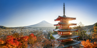 Chureito Pagoda with Mount Fuji during autumn season, Fujiyoshida, Yamanashi prefecture, Japan 20088050016| 写真素材・ストックフォト・画像・イラスト素材|アマナイメージズ