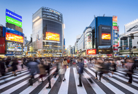 Shibuya Crossing, one of the busiest crossings in the world, Tokyo, Japan 20088050079| 写真素材・ストックフォト・画像・イラスト素材|アマナイメージズ