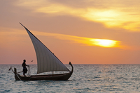 Maldives, Rasdhoo Atoll, Kuramathi Island. A Maldivian man sails a traditional Dhoni at sunset. MR. 20088054286| 写真素材・ストックフォト・画像・イラスト素材|アマナイメージズ