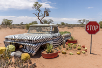 Africa, Namibia, Koes. Decorated vintage car by stop sign 20088060048| 写真素材・ストックフォト・画像・イラスト素材|アマナイメージズ