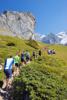 Europe, Swiss Alps, Switzerland, Bernese Oberland, Swiss Alps Jungfrau-Aletsch, Unesco World Heritage site, Jungfrau marathon 20088077174| 写真素材・ストックフォト・画像・イラスト素材|アマナイメージズ