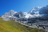 Europe, Swiss Alps, Switzerland, Bernese Oberland, Swiss Alps Jungfrau-Aletsch, Unesco World Heritage site, Jungfrau marathon 20088077176| 写真素材・ストックフォト・画像・イラスト素材|アマナイメージズ