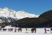 Europe, Switzerland, Graubunden, Engadine, St Moritz in winter, White Turf International Horse Race, Skikjoring event 20088077889| 写真素材・ストックフォト・画像・イラスト素材|アマナイメージズ