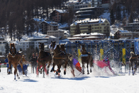 Europe, Switzerland, Graubunden, Engadine, St Moritz in winter, White Turf International Horse Race, Skijoring event 20088077890| 写真素材・ストックフォト・画像・イラスト素材|アマナイメージズ