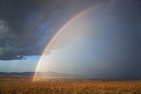 A beautiful double rainbow during a rainstorm at Kidepo National Park, Uganda, Africa 20088082965| 写真素材・ストックフォト・画像・イラスト素材|アマナイメージズ