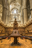 Walnut-carved choir inside the New Cathedral, Salamanca, Castile and Leon, Spain