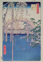 Footbridge over river with wisteria in foreground in full bl 22040004618| 写真素材・ストックフォト・画像・イラスト素材|アマナイメージズ