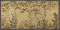 Mimosa tree, poppies, hollyhocks and other flowers, Edo period, 1630-70 (ink, colour & gold on paper) 22040081868| 写真素材・ストックフォト・画像・イラスト素材|アマナイメージズ